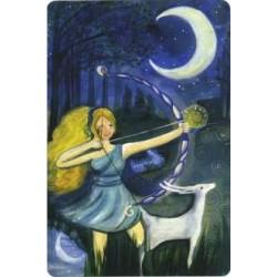 Luna rossa. L' Oracolo - Carte + Libro