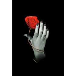 Diario Rosa Gotica - Tascabile
